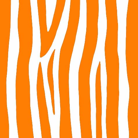 March 9 - 13  2011Orange Zebra Print Pattern